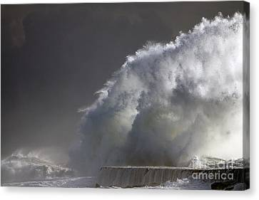 Big Storm Wave Canvas Print by Boon Mee