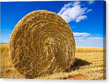 Big Straw Bales Canvas Print by Boon Mee