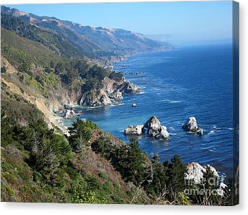Big Sur Coast Ca Canvas Print by Debra Thompson