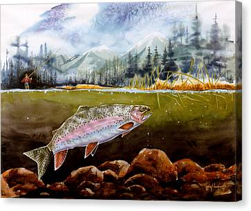 Big Thompson Trout Canvas Print by Craig T Burgwardt