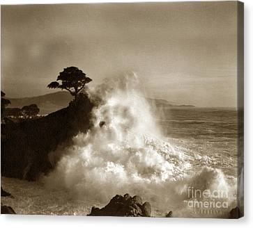 Big Wave Hitting The Lone Cypress Tree Pebble Beach California 1916 Canvas Print by California Views Mr Pat Hathaway Archives