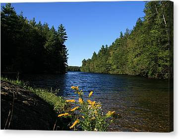 Bigelow Hollow  Canvas Print by Neal Eslinger