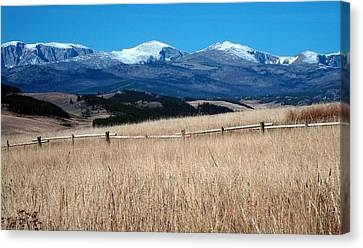 Bighorn Mountains Wy Canvas Print