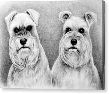 Billy And Misty Canvas Print by Andrew Read