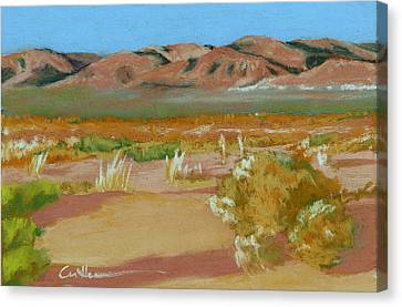 Billy Boy Territory Canvas Print by Diane Cutter