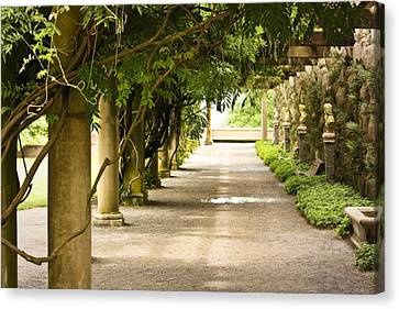 Canvas Print featuring the photograph Biltmore Pergola by Tammy Schneider