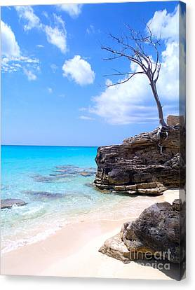 Bimini Beach Canvas Print by Carey Chen