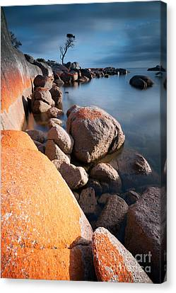 Stopper Canvas Print - Binalong Bay At Sunrise by Matteo Colombo