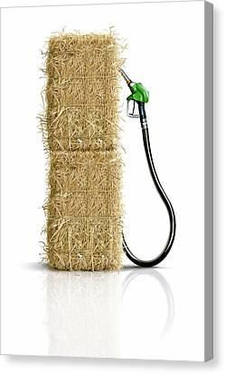 Biofuel Pump Canvas Print