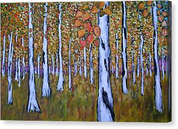 Birch Autumn Canvas Print