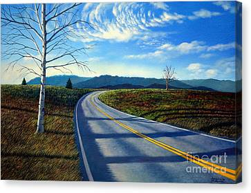 Birch Tree Along The Road Canvas Print