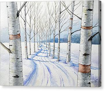 Birch Trees Along The Curvy Road Canvas Print