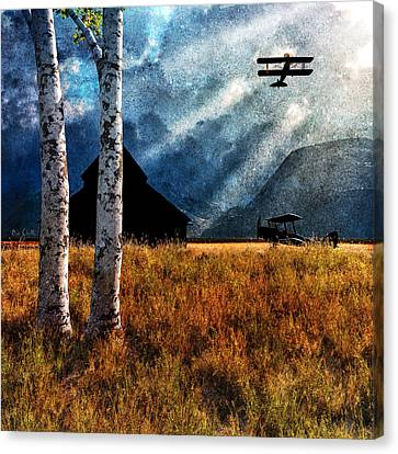 Barn Storm Canvas Print - Birch Trees And Biplanes  by Bob Orsillo