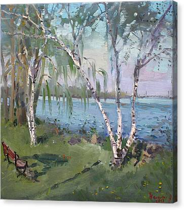 Riverscape Canvas Print - Birch Trees By The River by Ylli Haruni