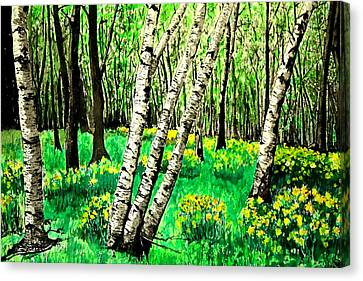 Birch Trees In Spring Canvas Print by Diane Merkle