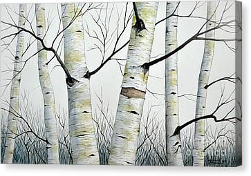 Birch Trees In The Forest By Christopher Shellhammer Canvas Print by Christopher Shellhammer