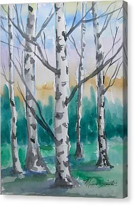Birch Trees Canvas Print by Melinda Saminski