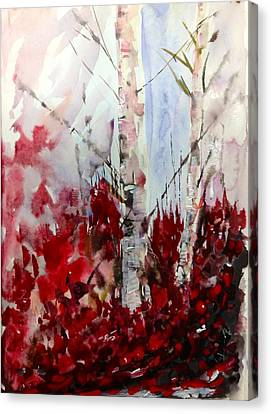 Birch Trees - Red Fall Foliage Canvas Print