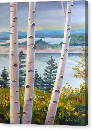 Birches In Nova Scotia Canvas Print