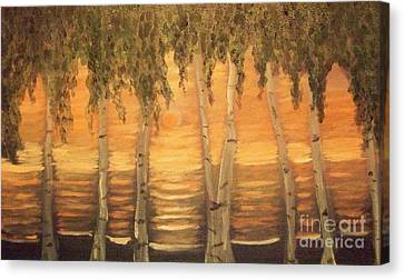 Birches In The Sun Canvas Print by Holly Martinson