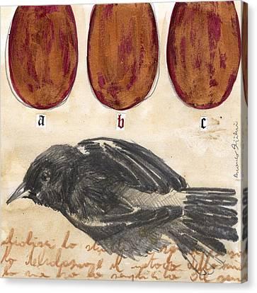 Bird 13 Canvas Print by Marco Sivieri