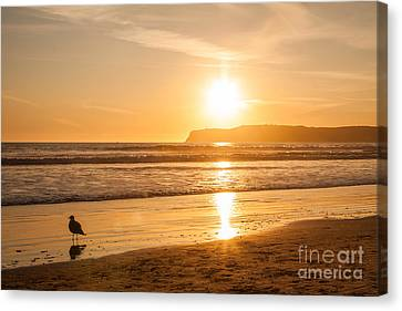 Canvas Print featuring the photograph Bird And His Sunset by John Wadleigh