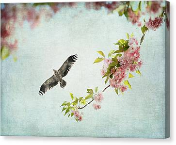 Bird And Pink And Green Flowering Branch On Blue Canvas Print by Brooke T Ryan