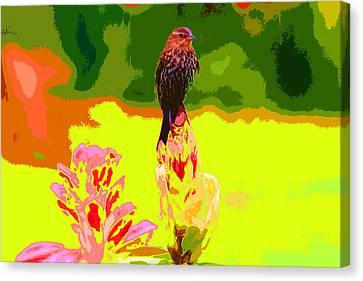 Bird And Rhodie Canvas Print