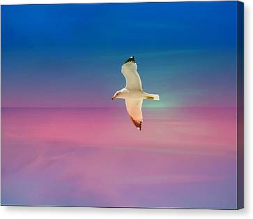 Canvas Print featuring the photograph Bird At Sunset by Athala Carole Bruckner