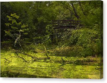 Bird By Bridge In Forest Merged Image Canvas Print by Thomas Woolworth