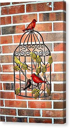 Bird Cage Decor Canvas Print by James Potts