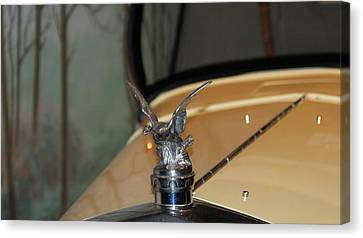 Silver-filled Canvas Print - Bird Hood Ornament by Rob Luzier
