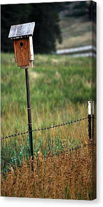 Canvas Print featuring the photograph Bird House 40 by Amee Cave
