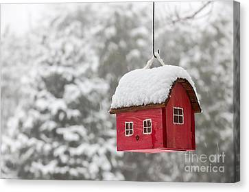 Bird House With Snow In Winter Canvas Print by Elena Elisseeva