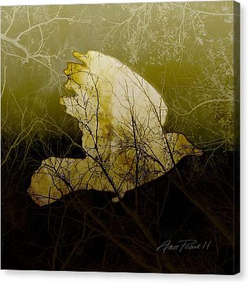Earth Tones Canvas Print - Bird IIi by Ann Powell