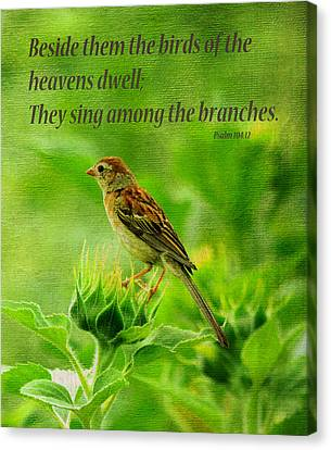 Bird In A Sunflower Field Scripture Canvas Print by Sandi OReilly