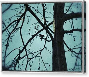 Canvas Print featuring the photograph Bird In Tree by Tara Potts