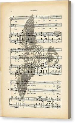 Nature Study Canvas Print - Bird Music by Georgia Fowler