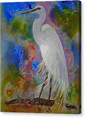 Bird Of Beauty Canvas Print