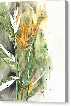 Bird Of Paradise 08 Elena Yakubovich  Canvas Print by Elena Yakubovich