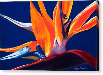 Bird Of Paradise Canvas Print by Mary Benke
