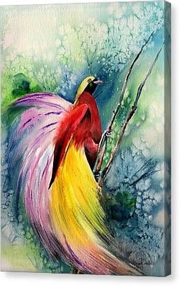 Bird Of Paradise New-guinea Canvas Print