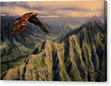 Cabin Wall Canvas Print - Bird Of Prey 310 by Movie Poster Prints