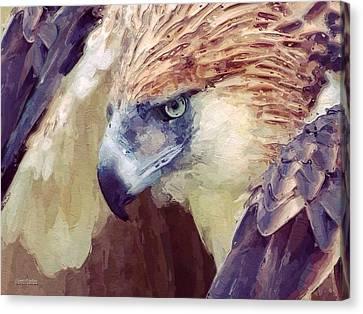 Bird Of Prey Portrait Canvas Print by Scott Wallace