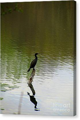 Bird On The Lake Canvas Print by Avis  Noelle