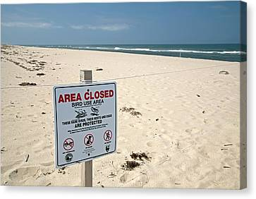 Bird Protection Area On A Beach Canvas Print