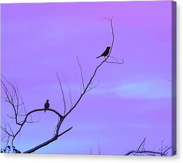 Bird Silhouette 4 Canvas Print by Cathy Lindsey