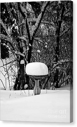 Birdbath In Winter Canvas Print by Frank J Casella