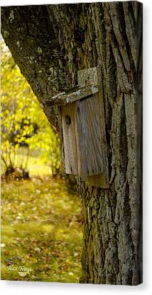 Birdhouse Canvas Print by Alex King