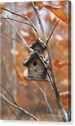 Canvas Print featuring the photograph Birdhouse Hanging On Branch With Leaves by Sandra Cunningham